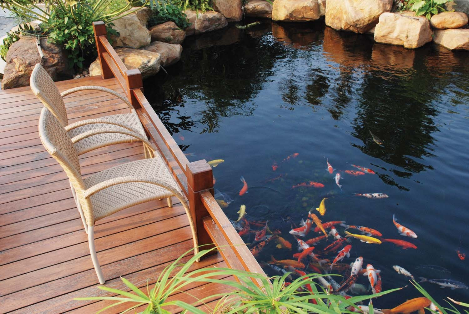 20 koi pond ideas to create a unique garden i do myself for Koi pond how to