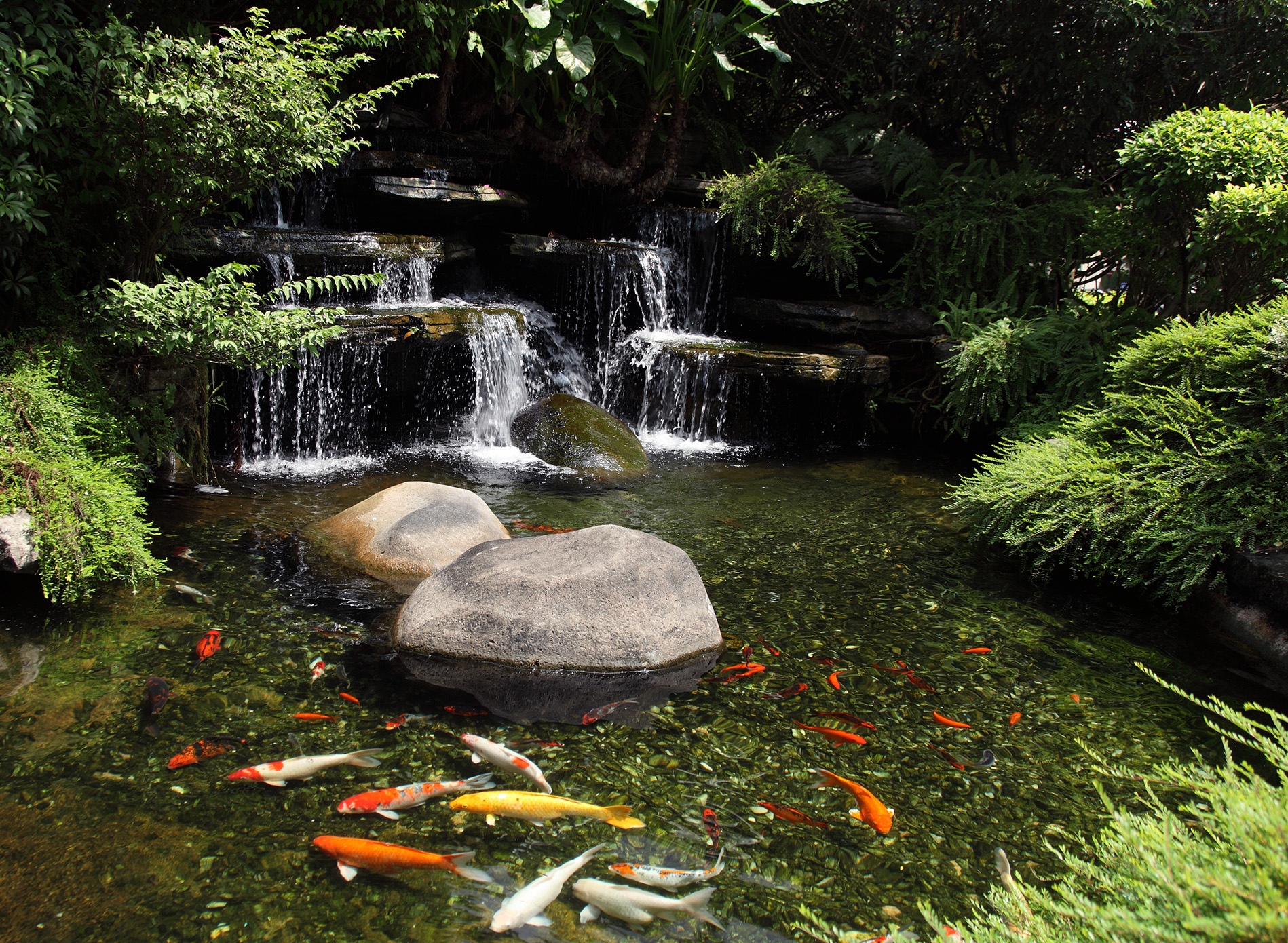 20 koi pond ideas to create a unique garden i do myself for Backyard koi pond ideas