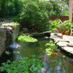 20 Koi Pond Ideas To Create A Unique Garden