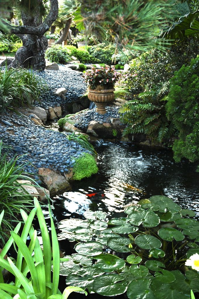 20 koi pond ideas to create a unique garden i do myself for Pond shade ideas